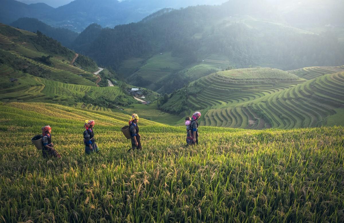 Circuit de 5 jours au Cambodge